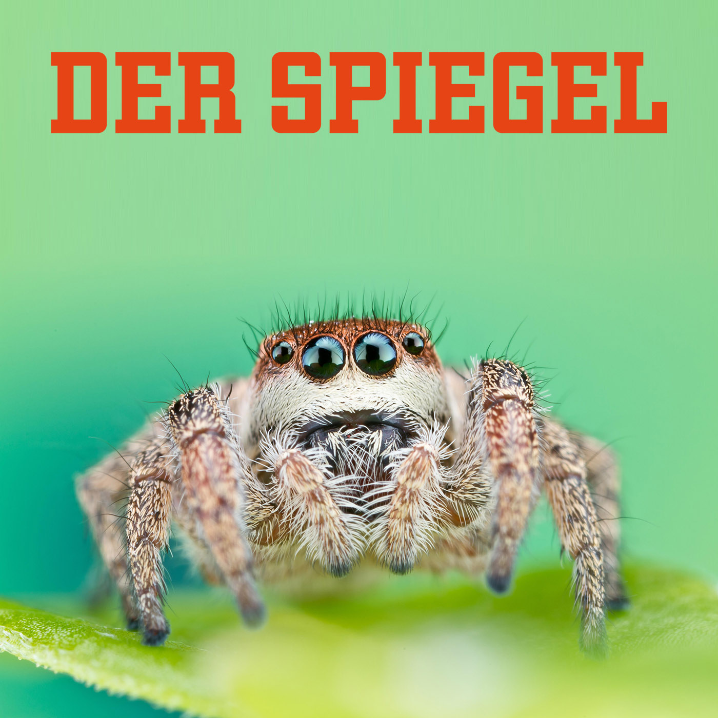 Der Spiegel coverage of our color vision research