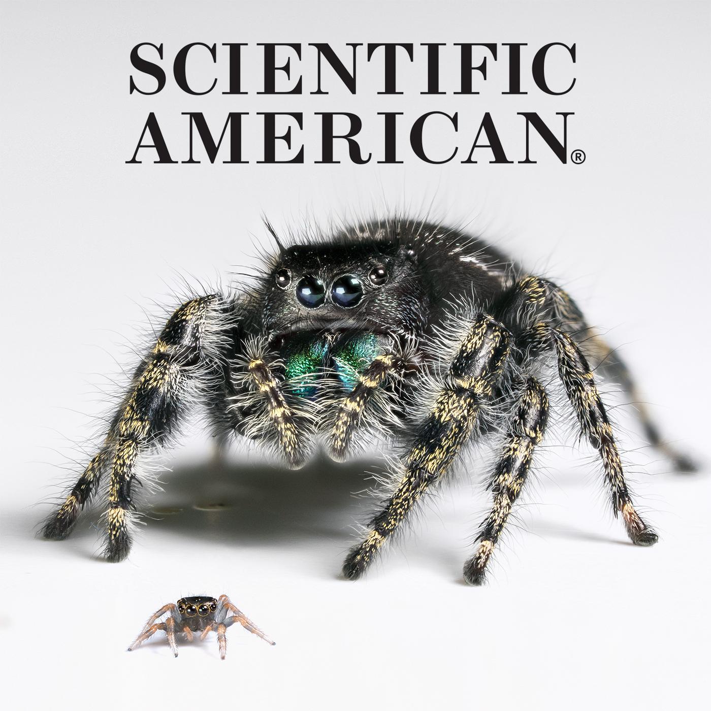Scientific American Press Coverage